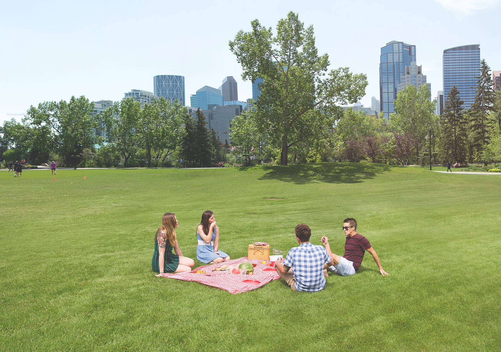 Summer picnic at a Calgary Park