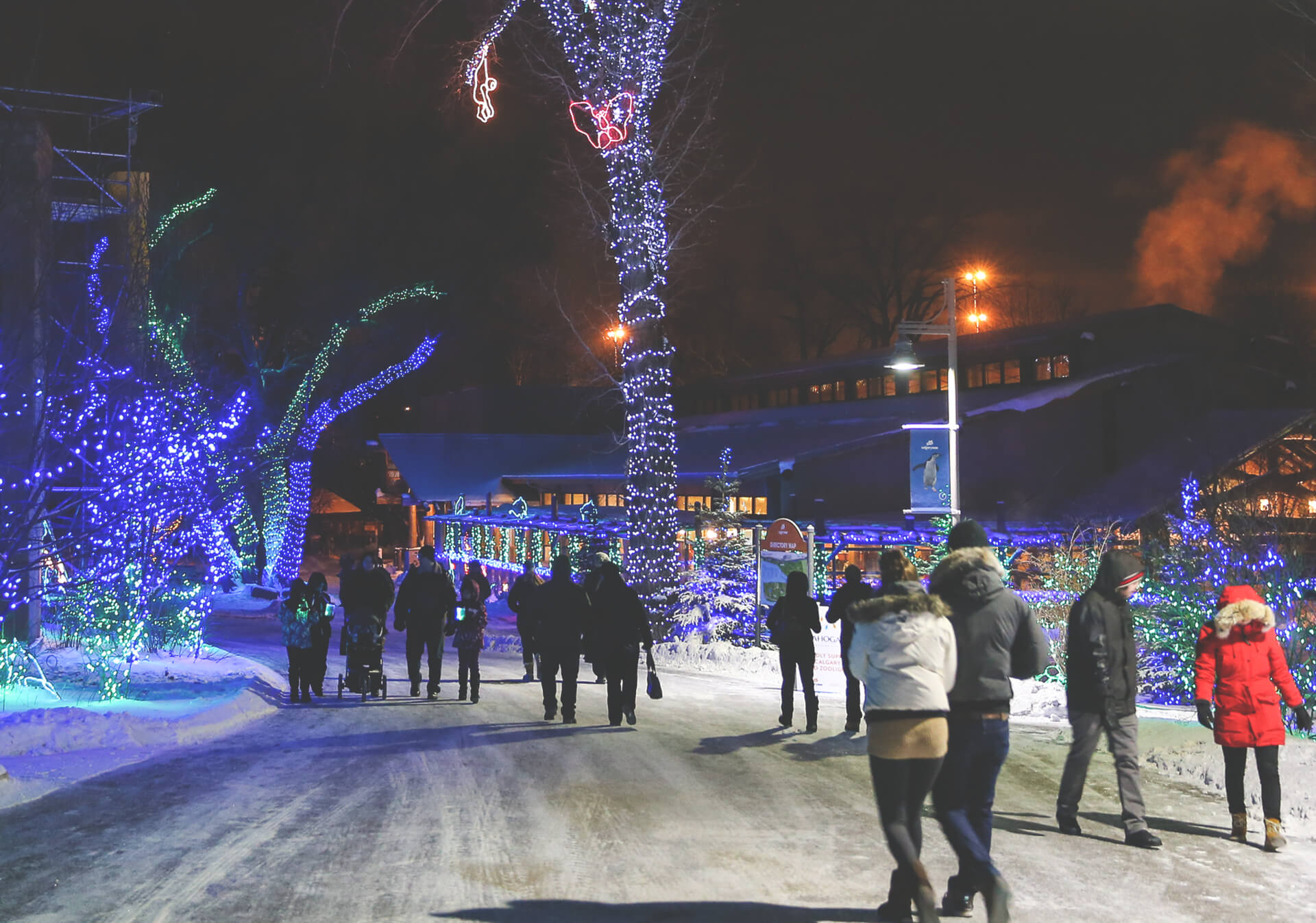Christmas Lights In Calgary Tourism Calgary