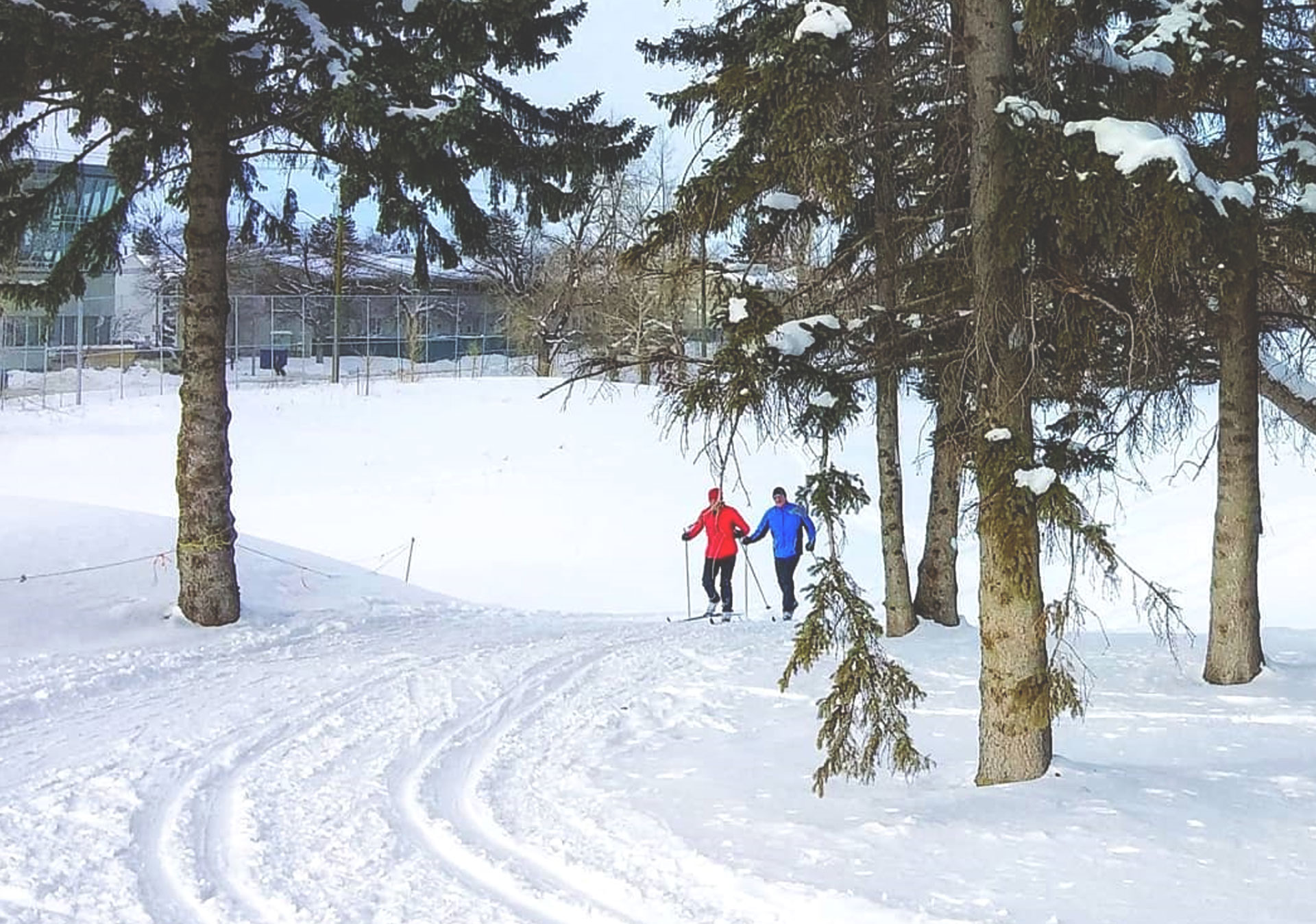Cross country skiing at the Shaganappi Point Golf Course in Calgary (Photo credit: @dabertime on Instagram).