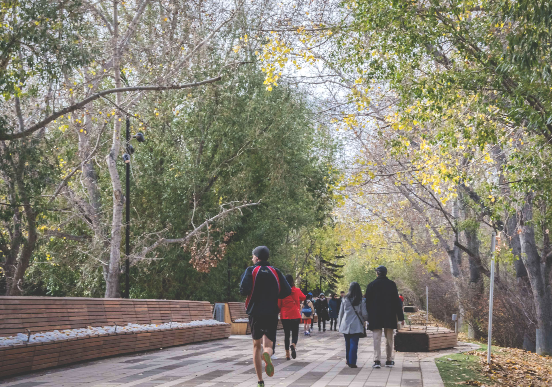 Start your walk along the Bow River Pathway downtown before heading out west to Edworthy Park