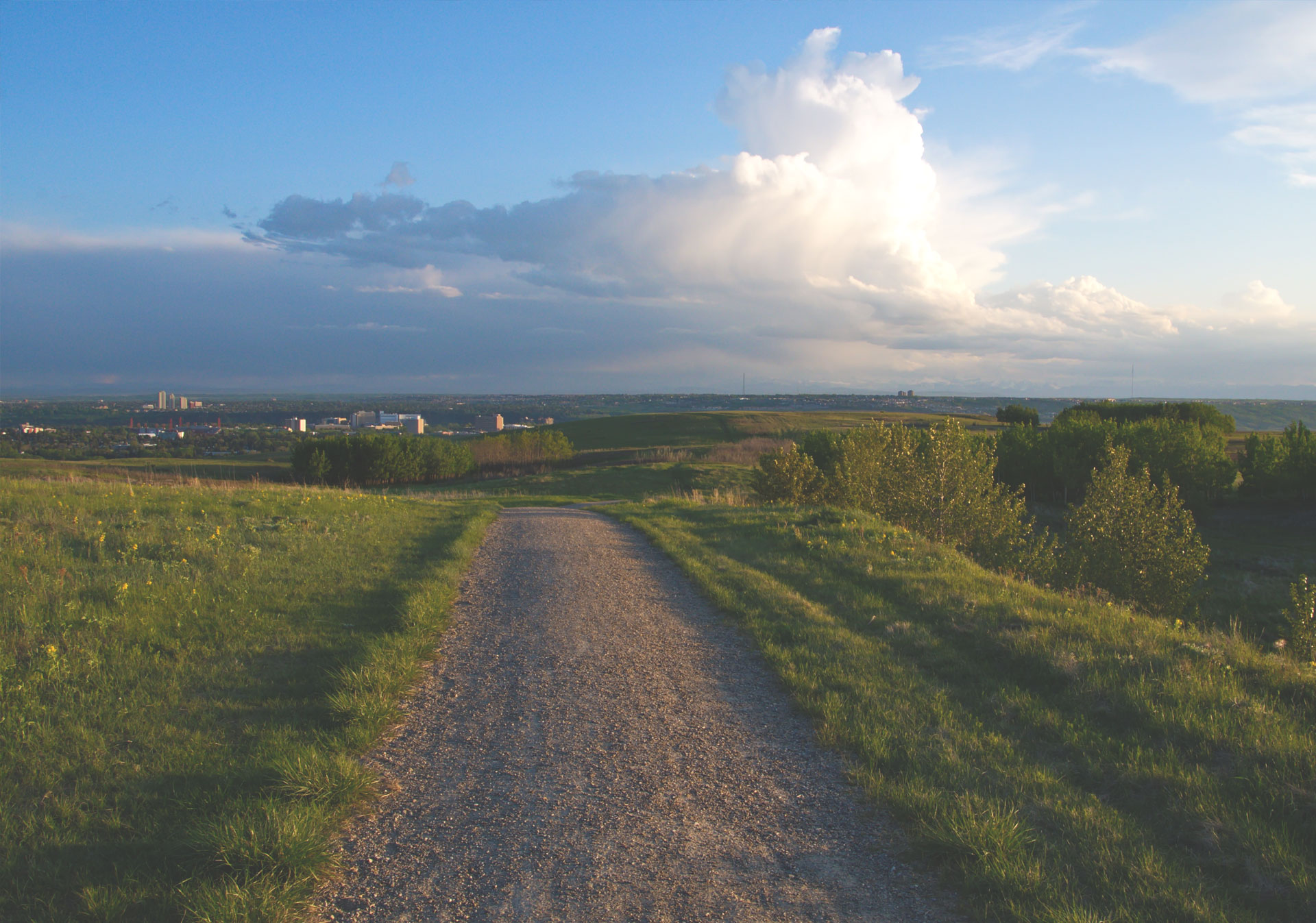 Nose Hill Park provides great views of the city