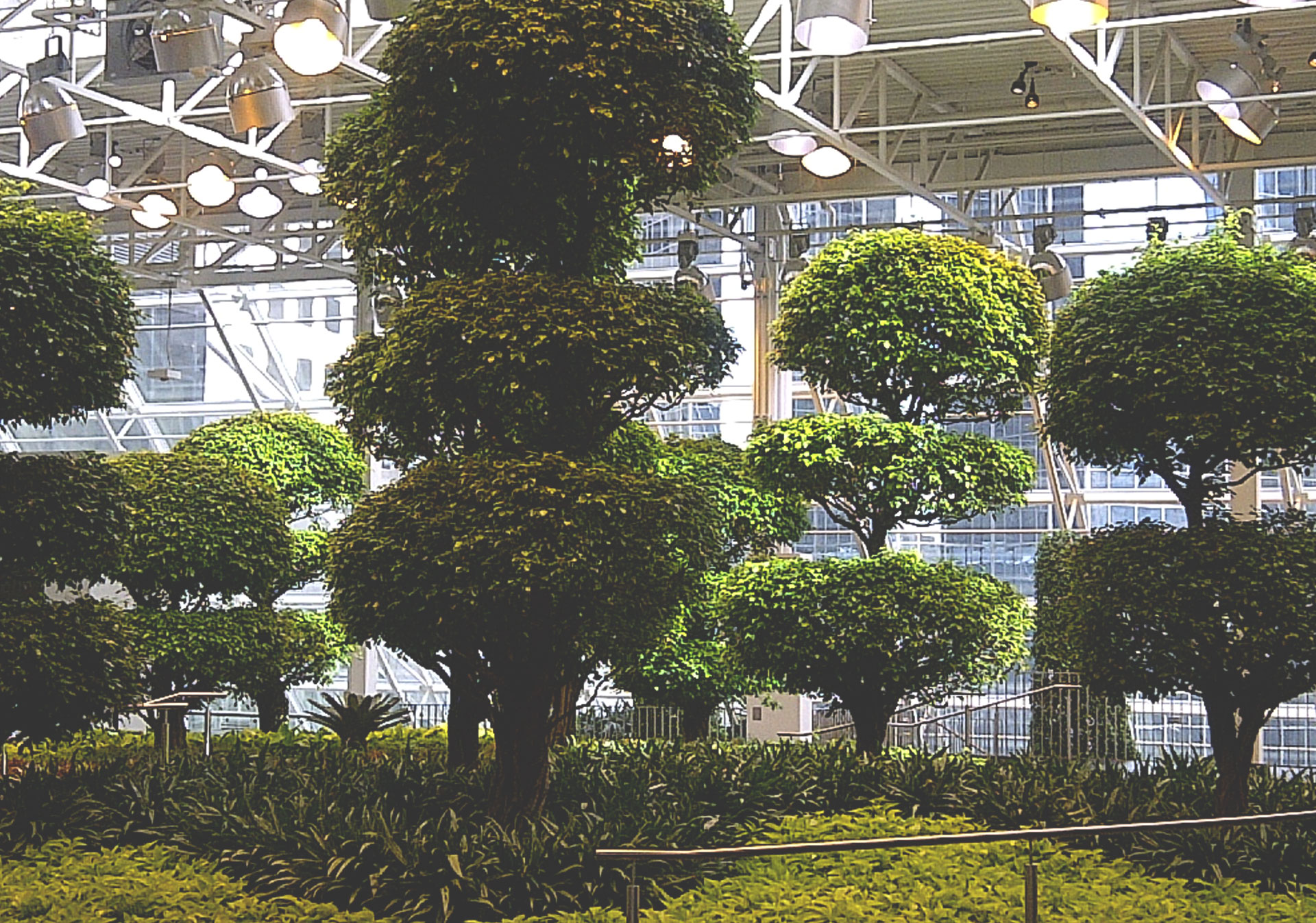 Devonian Gardens is a city park located in the top floor of the CORE Shopping Centre