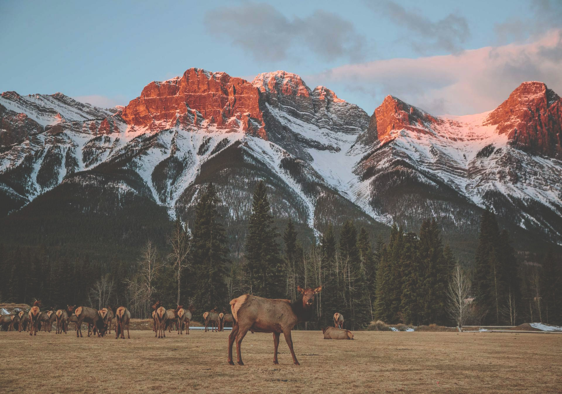 Views of Banff National Park