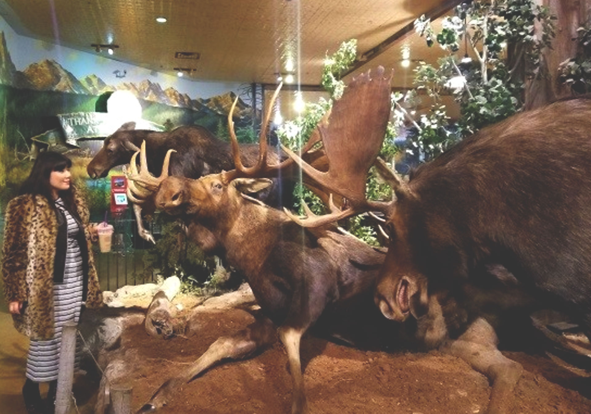 Inside Bass Pro Shops at CrossIron Mills