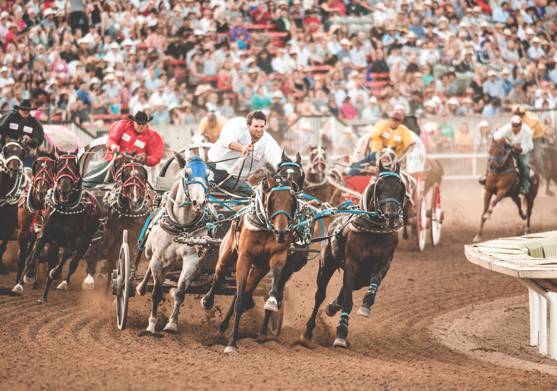The chuckwagon races are a must-see experience at the Calgary Stampede.