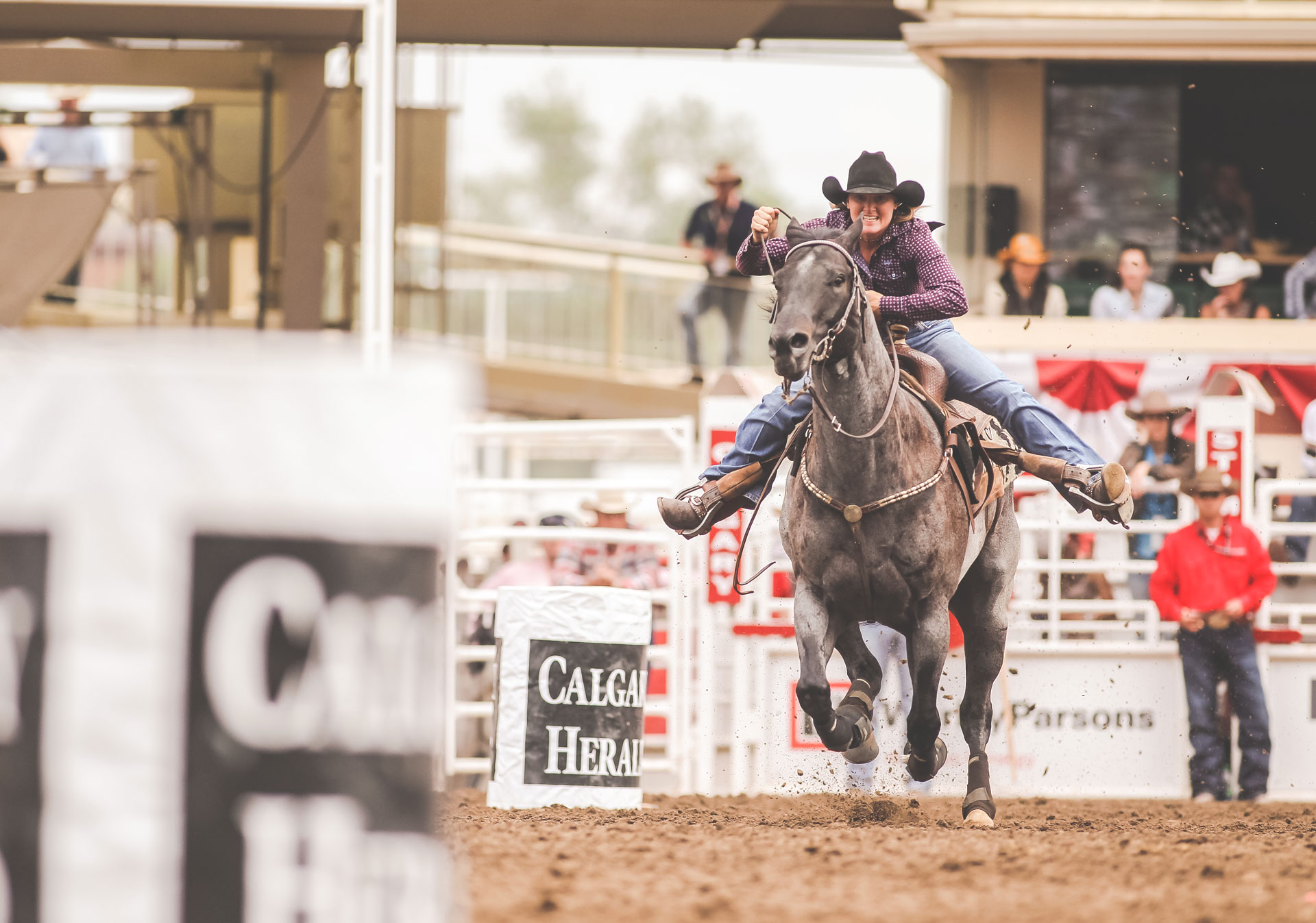 Cheer on the barrel racers at the Calgary Stampede rodeo.
