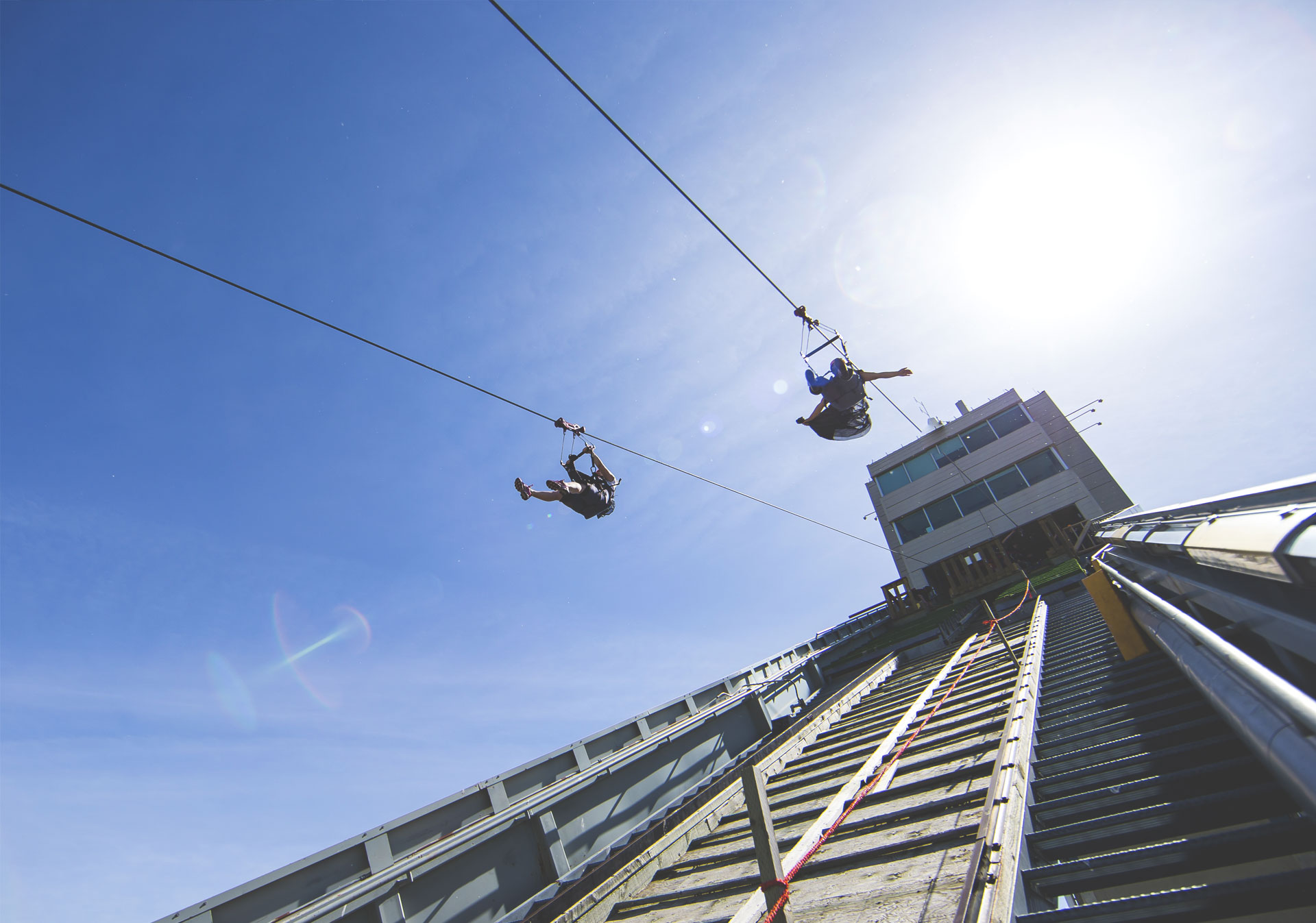 Go for a ride on the Monster Zipline at WinSport.