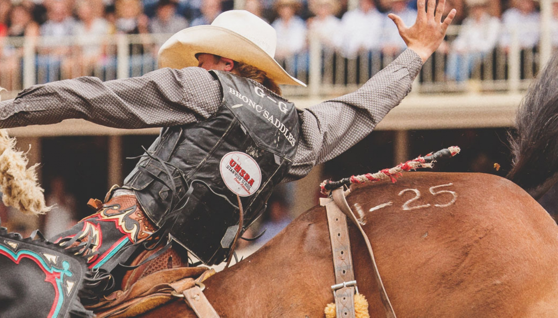 Everything You Need to Know About the Calgary Stampede