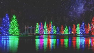 Spruce Meadows Christmas Lights Photo credit: Andy Young